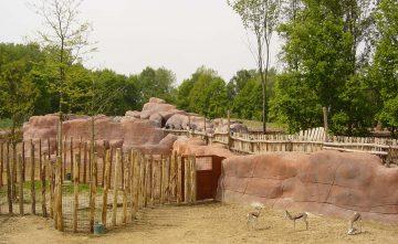 Complete dierentuin