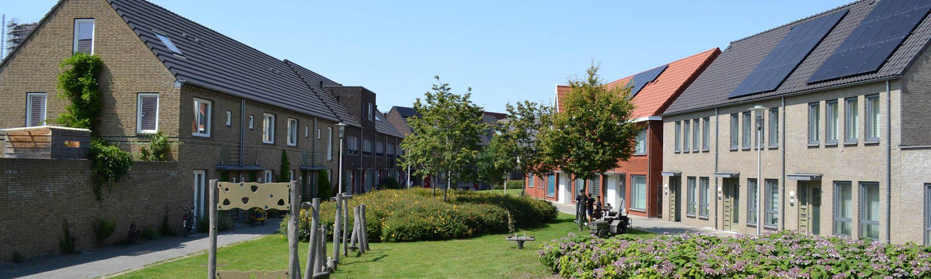 TenG_Groene Vingers Vredesplein Eindhoven (14)