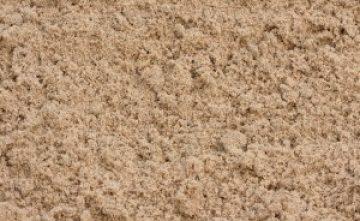 Is een zandbak een bron van ziektekiemen of is dit te voorkomen door preventief onderhoud?